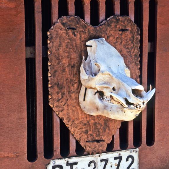 argentinaindiemade-3.jpg