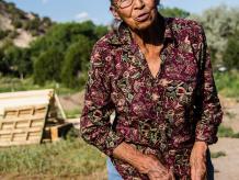 Elderly Fruit farmer